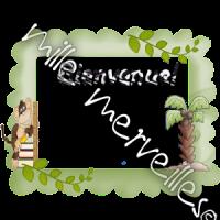 Affichages singes
